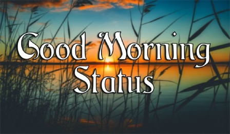 Good Morning Wishes Status Video